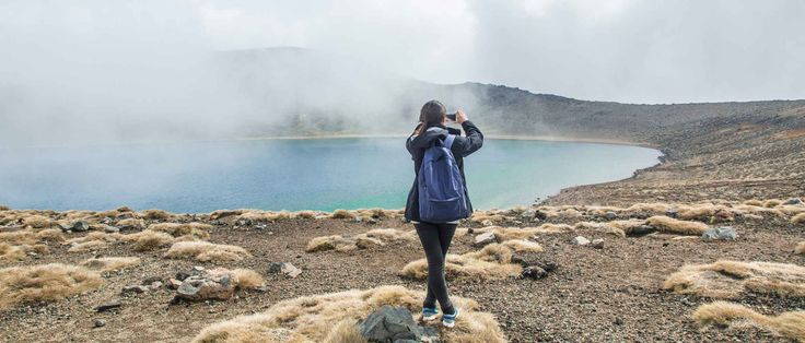 Three places in New Zealand you won't find in any guidebook - TripSmarts | Travel Insurance Direct