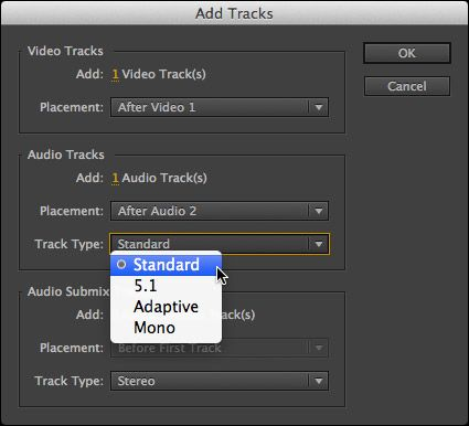 how to change audio in premier pro