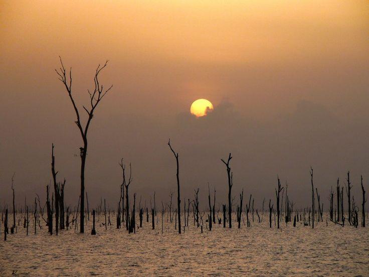 van Blommesteinmeer, Suriname - South America