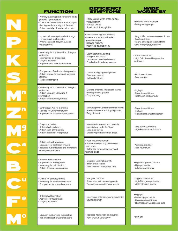 Helpful guide to plant nutrients!   #infographics #plants #hydroponics #nutrient deficiency