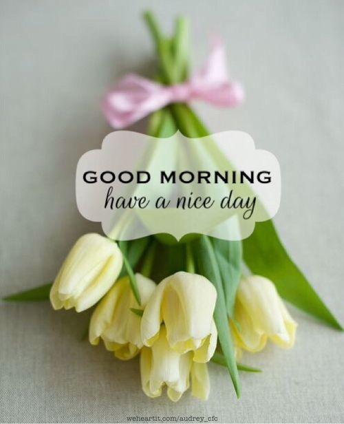 image: good morning image [35]