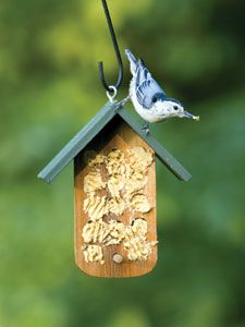 Bark Butter Feeder.  A MUST have in any bird lover's yard or garden.