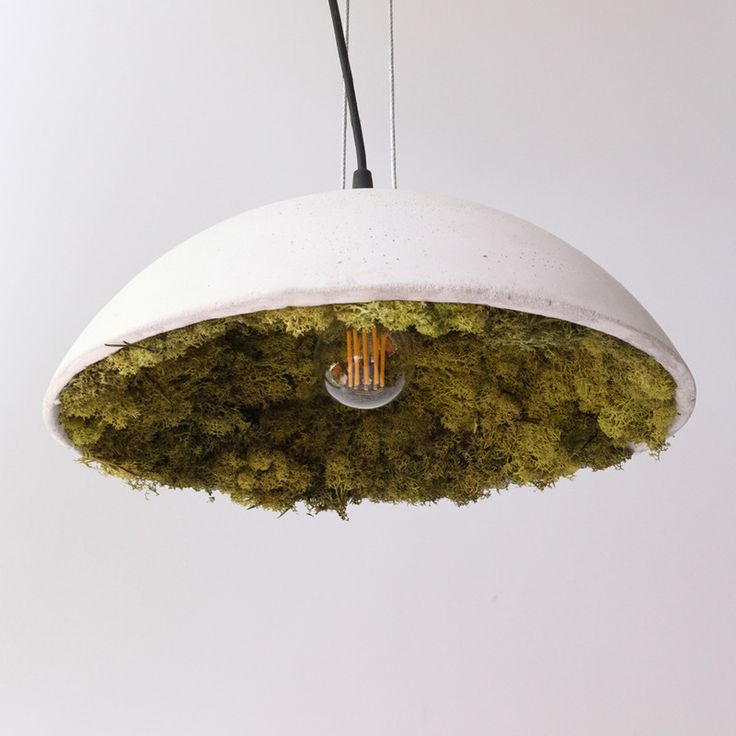 Beton-Lampenschirm mit Islandmoos von Herr Mittmann. Deckenlampen günstig online kaufen bei Möbel & Garten.