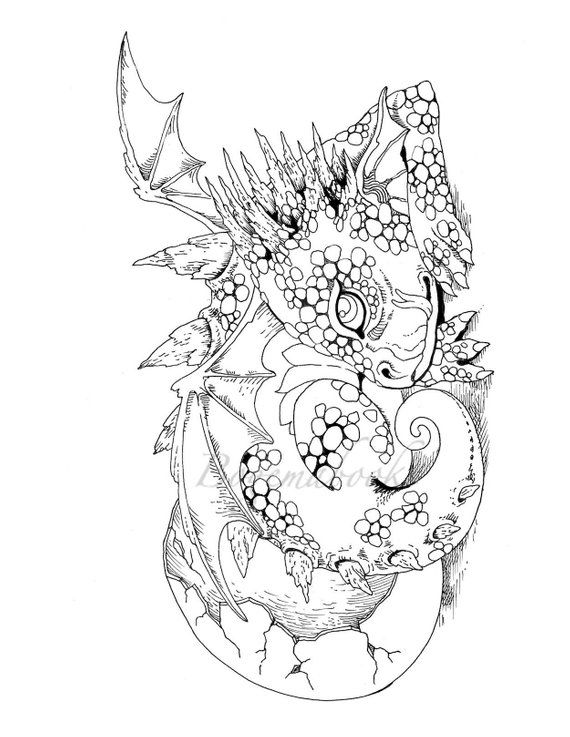 Nice Little Dragons (Adult Coloring Book, Coloring pages ...