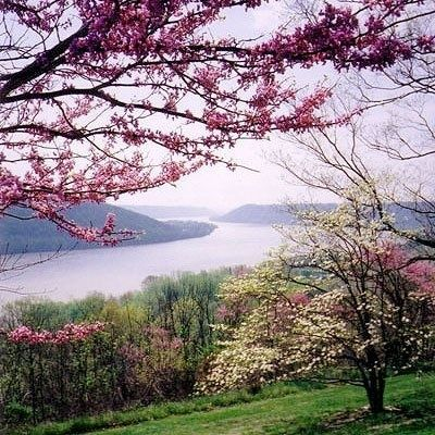 hanover college | View from the Hanover College campus in spring----Hanover, Indiana ...