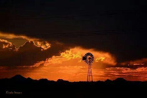 Near Bloemfontein