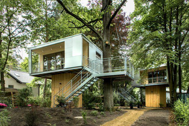 都会の森のなかに建つ、近代的なツリーハウス