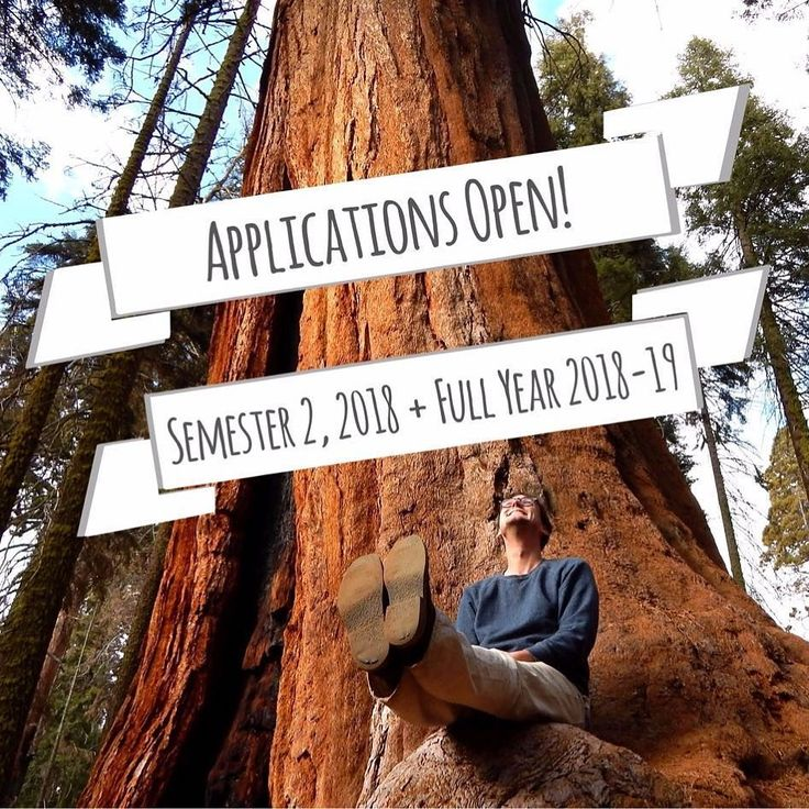 Applications are now open for Semester 2 2018 and a Full Year 2018-19! Remember that some of our Canadian partners only have one round of applications per year so now is the time to apply for Semester 1 2019 for McMaster University University of Alberta (Law) University of British Columbia University of Calgary University of Montreal (Law) and University of Victoria! If you have any questions about applications DM us!  #student #exchange #canada #applications #globallearning #studyabroad…