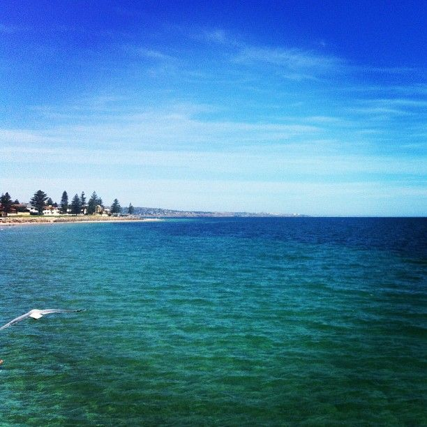 Venture out to Glenelg Beach for dip in the waters!