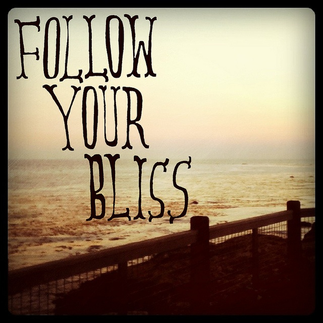 Blissful Good Morning Quotes: 57 Best Images About Follow Your Bliss On Pinterest