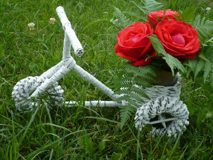 a bicycle of roses