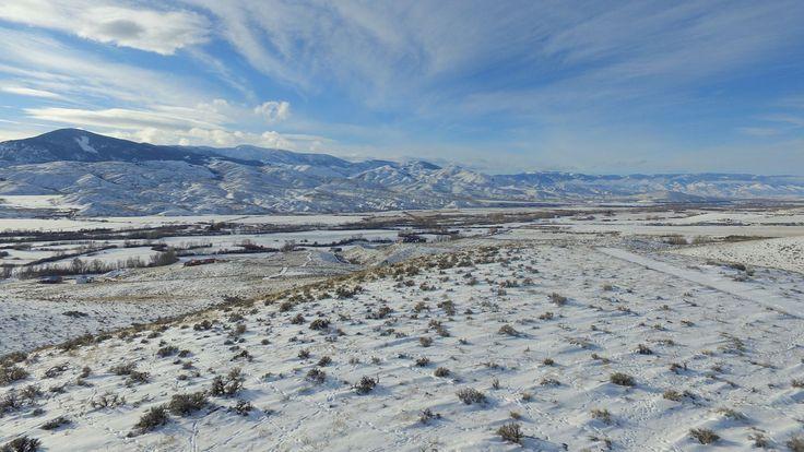 Pronghorn Antelope Tracks (Part 4)   by Dan Beland