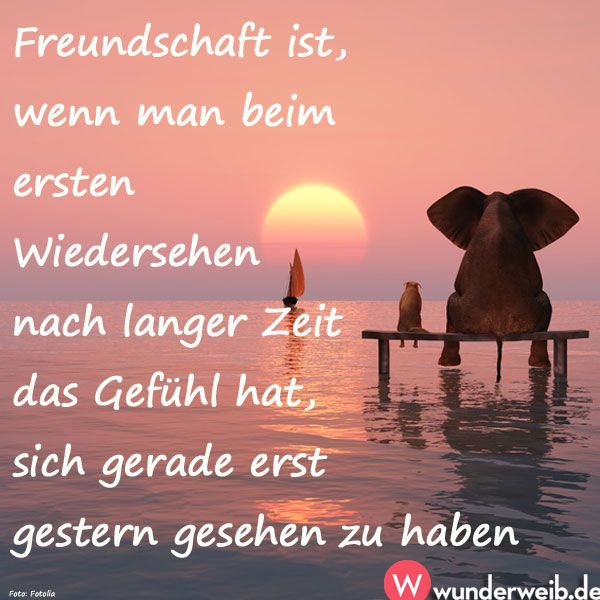 Freundschaft ist, wenn man beim ersten Wiedersehen nach langer Zeit das Gefühl hat, sich gerade erst gestern gesehen zu haben