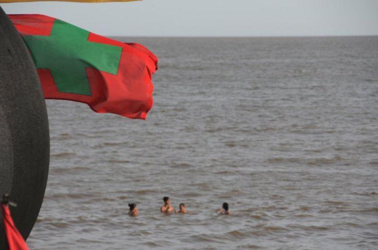 Otra vez cianobacterias en las playas de Montevideo | La intendencia reitera la recomendación de no bañarse mientras esté la bandera roja con una cruz verde
