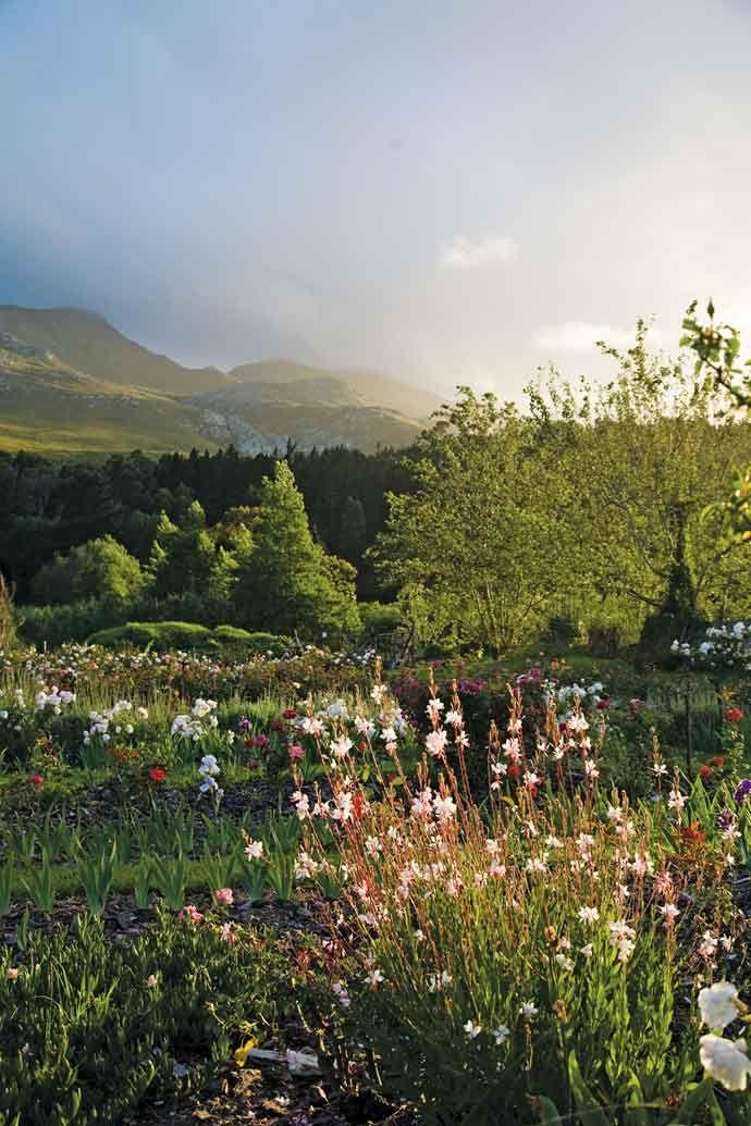 Elgin Country Garden, Elgin, Moray, the Highlands, Scotland