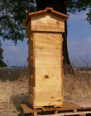 The Warre hive is a traditional alternative to the more common hive designs that may have merit. #beekeeping #beehives