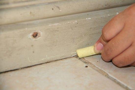 Les 35 meilleures images du tableau a d couvrir sur pinterest chercher les fourmis et - Lutter contre les fourmis ...