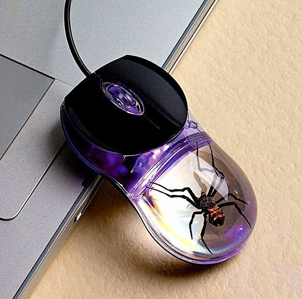 Meet The PC Mouse That Has A Real Spider Inside The Casing - Tired of using traditional wired mouse? Want a new one with an exquisite design? Smithsonian has something in their sleeves for you. Smithsonian has brought a new mouse called Glow-in-the-Dark Spider Computer Mouse which has a real dead spider inside its clear acrylic casing. [Click on Image Or Source on Top to See Full News]