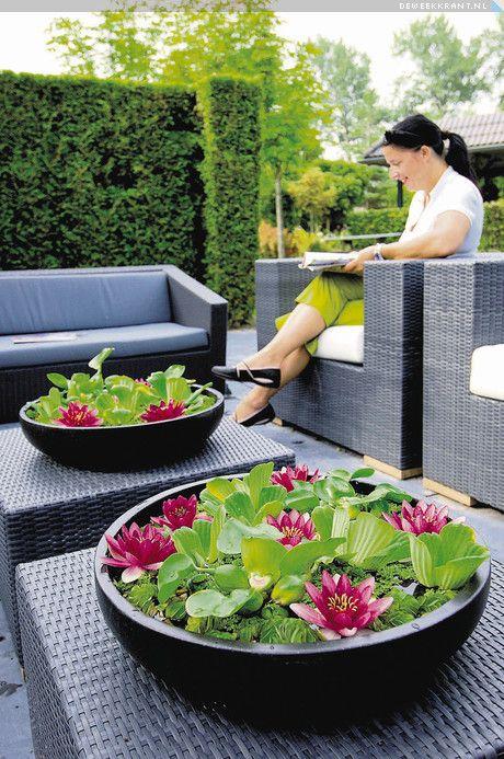Mooie minivijvers voor op de tuintafel!