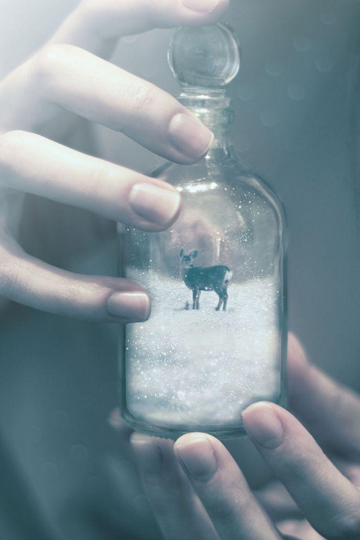 Hermosas Fotografías surrealistas que te harán soñar, por la artista Omerika | videografoto