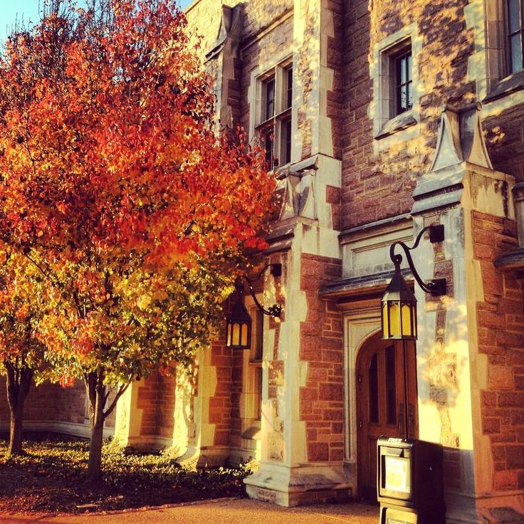 1000+ Ideas About Washington University On Pinterest