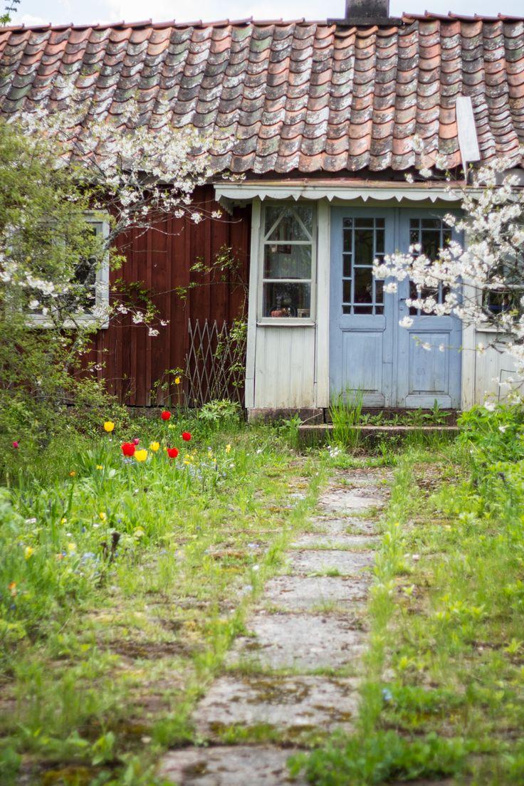 Die Natur Schwedens mit all seinen Wäldern, Seen und Blumen haben mich genauso fasziniert, wie die kleinen Schwedenhäuser und ihre freundlichen Bewohner. Ich weiß nur eins: Ich will wieder nach Schweden. #schweden #reisen