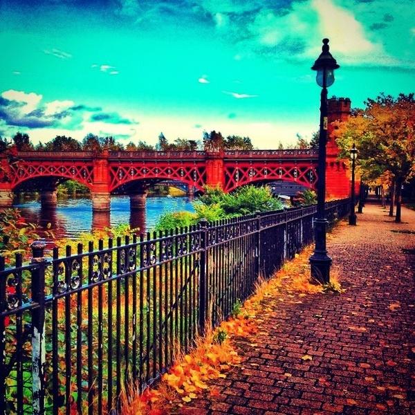 #autumn #glasgow #scotland Gorgeous! www.paltechnologies.com