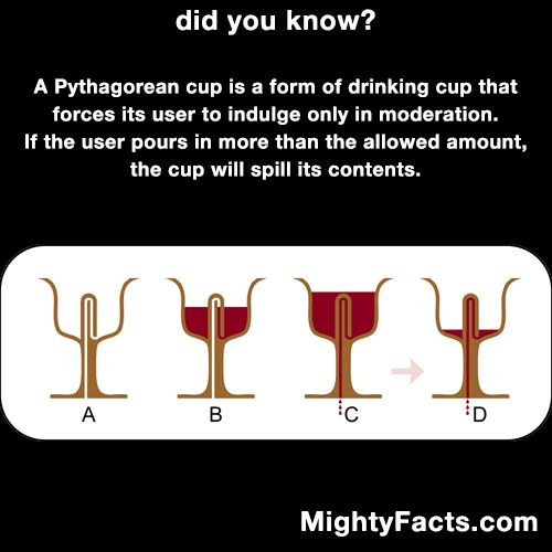 Follow Mighty Facts on Pinterest: http://pinterest.com/mightyfacts