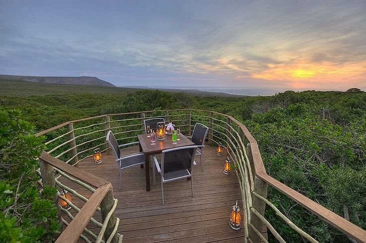 Grootbos Private Nature Reserve - 5* Eco-paradise offering views of the flora & marine life from the Southern Tip of Africa