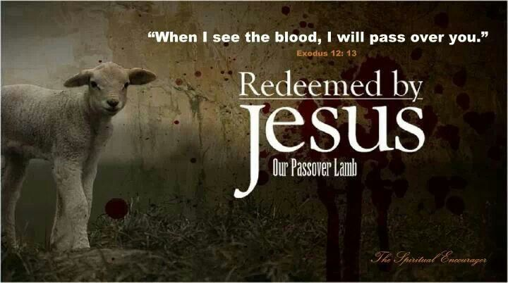 """When I see the blood, I will pass over you."" Exodus 12:13:"