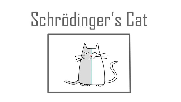 A TED-Ed Animation Explaining the Schrödinger's Cat Thought Experiment in Quantum Mechanics