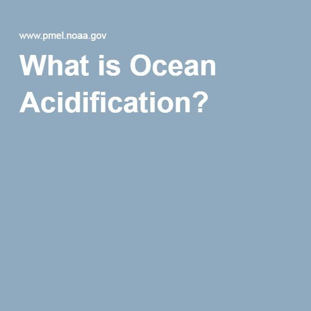 Best 25+ Ocean acidification ideas on Pinterest | Coral ...
