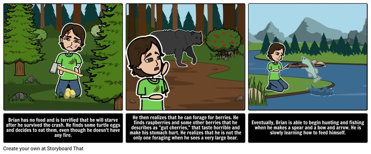 Hatchet Lesson Plans include sequence of events, Hatchet summary, literary devices in the Hatchet, & literary conflict Man vs Nature   Hatchet Gary Paulsen