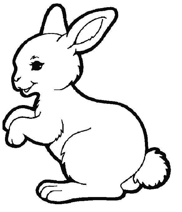 Rabbit Wants To Spring Coloring Pages