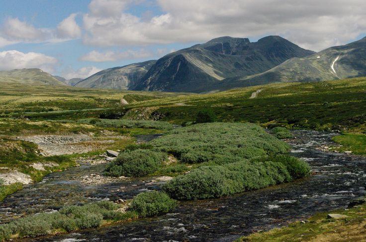 Noruega - Parque Natural de Rondane