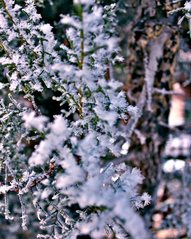 #winter #snow #kar #kış