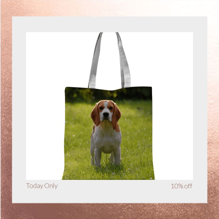 Today Only! 10% OFF this item.  Follow us on Pinterest to be the first to see our exciting Daily Deals. Today's Product: Bag Sale - Beagle Tote Bag Buy now: https://small.bz/AAgApMA #musthave #loveit #instacool #shop #shopping #onlineshopping #instashop #instagood #instafollow #photooftheday #picoftheday #love #OTstores #smallbiz #sale #dailydeal #dealoftheday #todayonly #instadaily