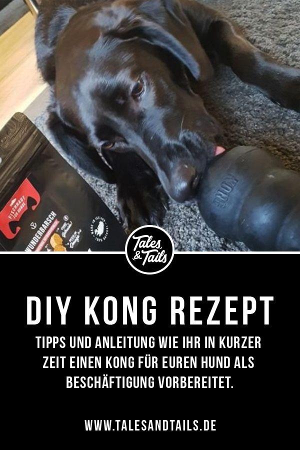 Kong Richtig Fullen Hunde Hundchen Ubung Und Spielzeug Hund