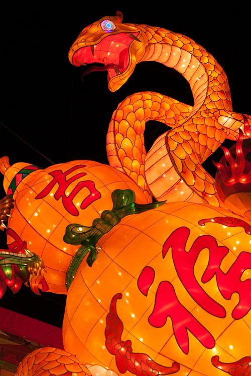 Nagasaki lantern festival  ---------#japan #japanese #lanterns