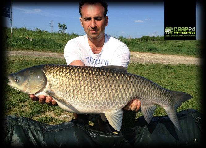 """Ştefan Babiţa: """"La 7:30 m-am trezit cu forțe proaspete și am reluat pescuitul. Nici bine n-am poziționat lansetele că...""""    Detalii aici >>> http://www.crap24.ro/la-pescuit-de-ten-pe-tancabesti/"""