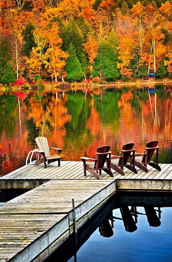 Wooden dock on autumn lake (Algonquin Park, Ontario) by Elena Elisseeva / 500px
