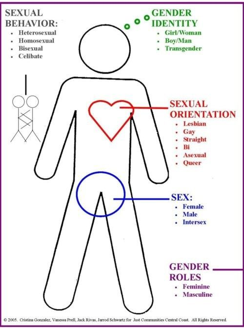 54 Best Visualizing Gender Identity Binaries, Spectrums -3988