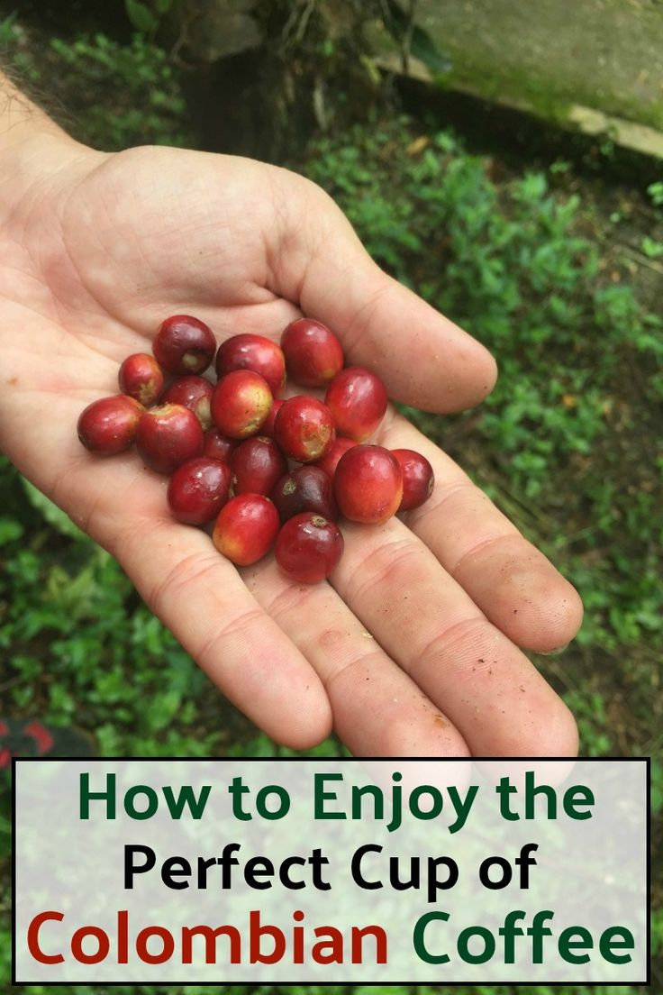 Explore Colombia's coffee culture!