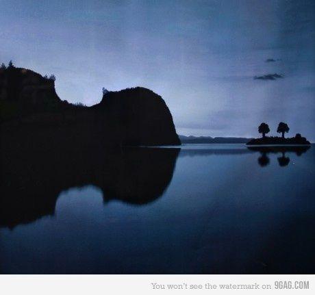 :: Violin Island ::