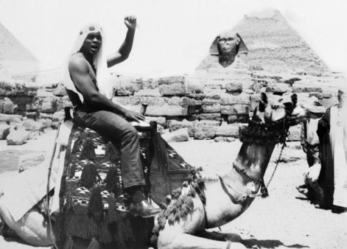 Muhammad Ali sitting on a camel and giving the black power salute during a visit to Egypt