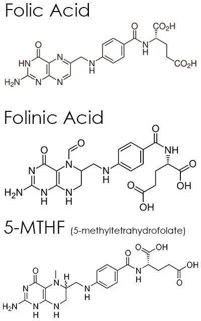 Folate, Folic Acid, Folinic Acid, 5-MTHF