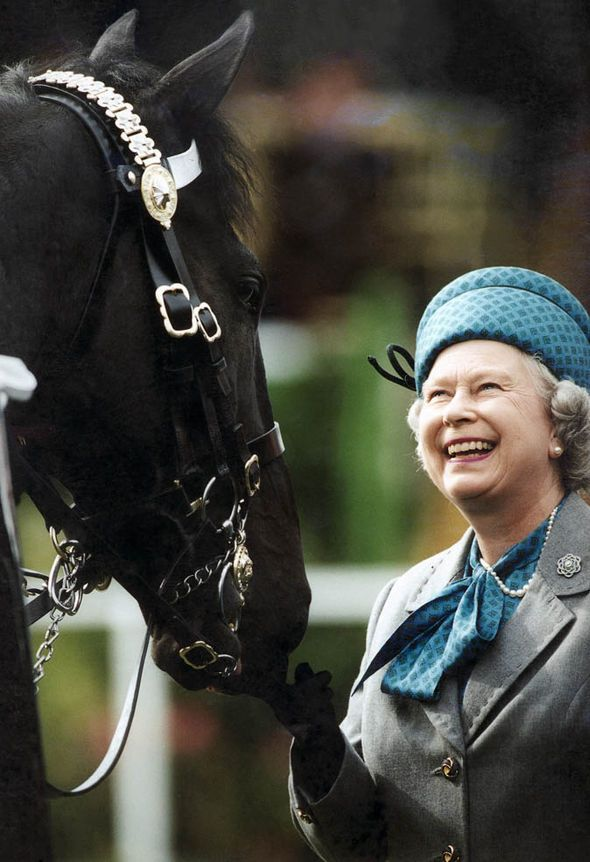QUEEN ELIZABETH II SMILING AT A HORSE : Resego has bought  a Jeep Wrangler inspired by the  David and Serena Linley photo under a tree with a chandelier.A wrangler means a person in charge of horses or livestock on a ranch. A bow to her majesty Queen Elizabeth II,Protocol observed (02.06.2016)