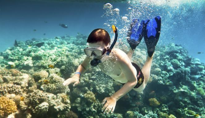 Catat, 4 Yang Harus Diperhatikan Saat Snorkeling di Gunungkidul
