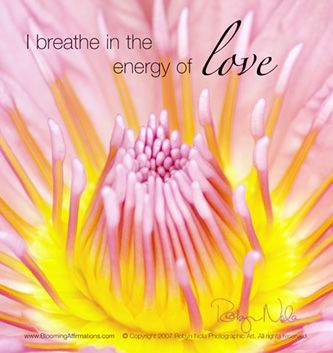 Blooming Affirmations are positive affirmation cards that are inspired by the healing power of nature.