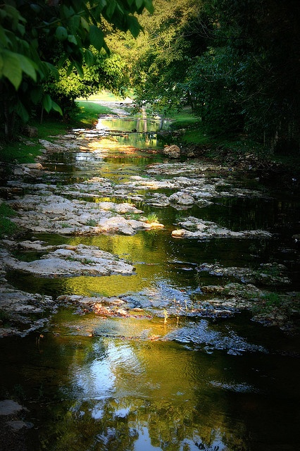 "Yellville, Arkansas: This picture was taken at the ""Front Porch"" resturant in Yellville Arkansas. This creek runs right behind it."